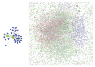 An example of entity resolution: GrDB, a network analysis tool, enables scientists to interactively explore a large, noisy information network (right) and identify that the two green nodes (above) refer to the same person. Illustration by Hui Miao; Tool developed by Miao, Walaa Moustafa, Amol Deshpande, and Lise Getoor.