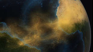 This conceptual image depicts dust from the Saharan Desert crossing the Atlantic Ocean to the Amazon rainforest in South America. Image: Conceptual Image Lab, NASA/Goddard Space Flight Center (Click image to download hi-res version.)